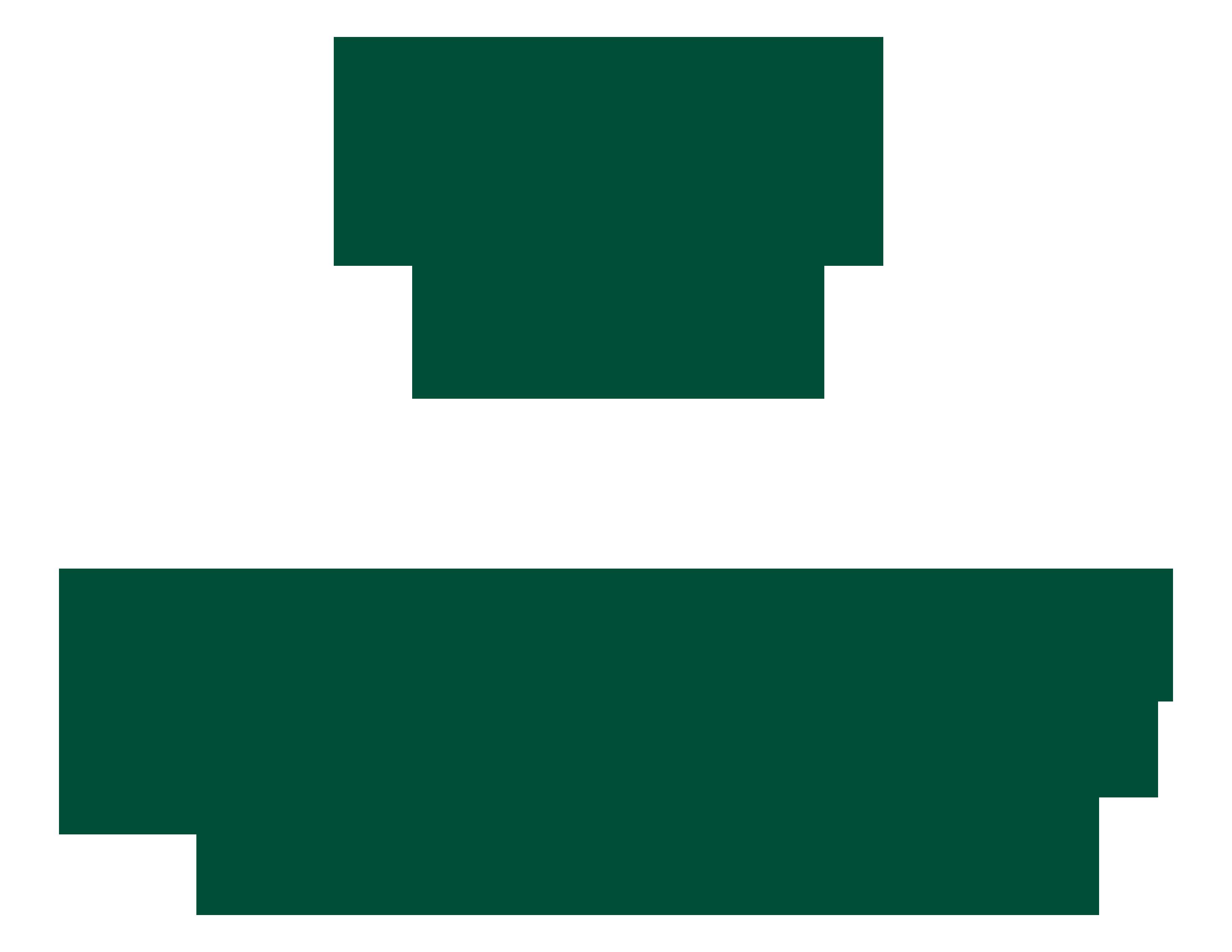 Corazones en Acción Internacional